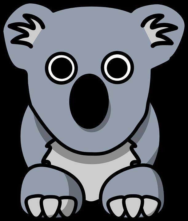 Koala forest animal