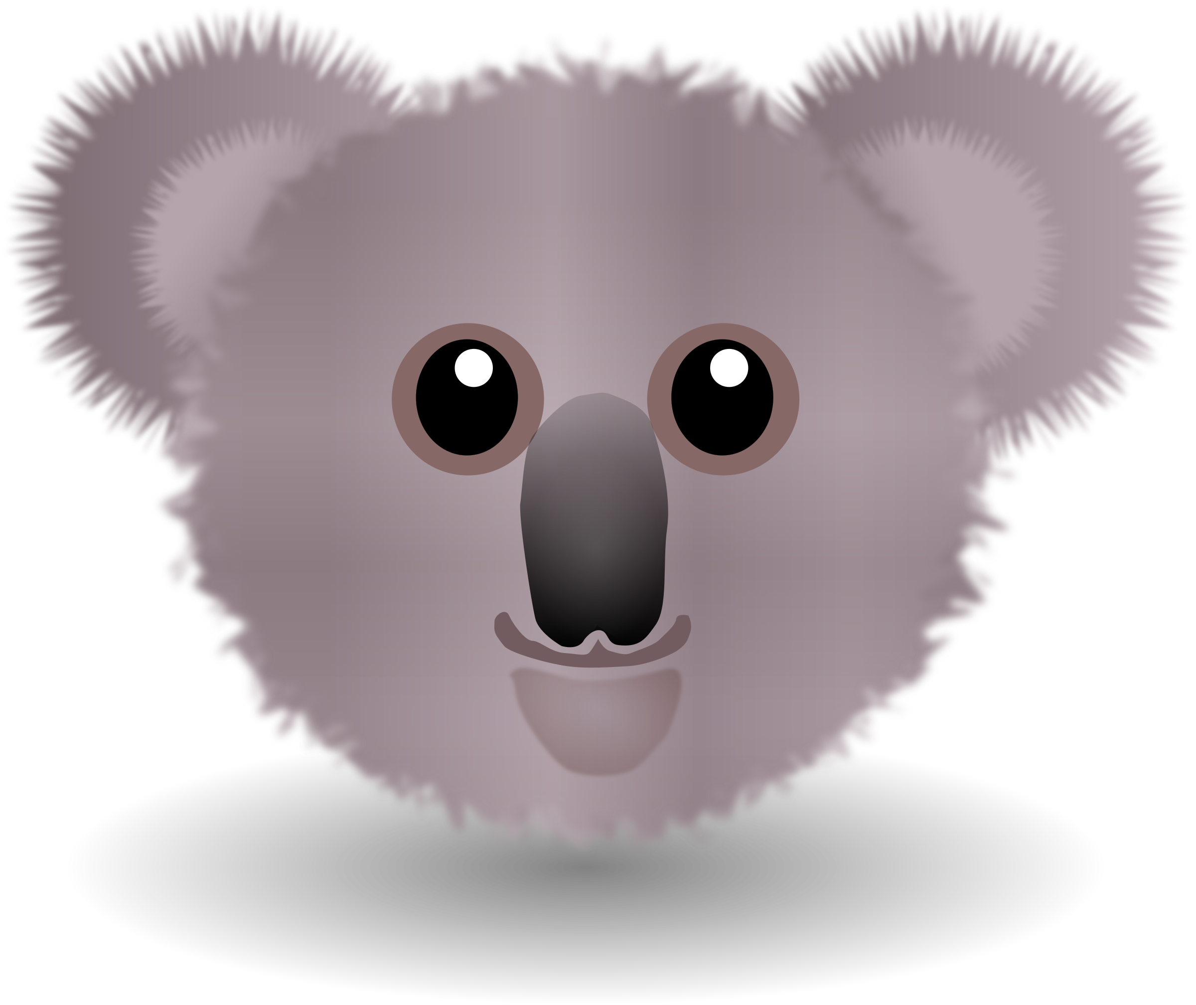 Koala grey