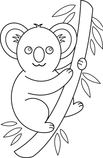 Koala clipart outlines. Free outline cliparts download
