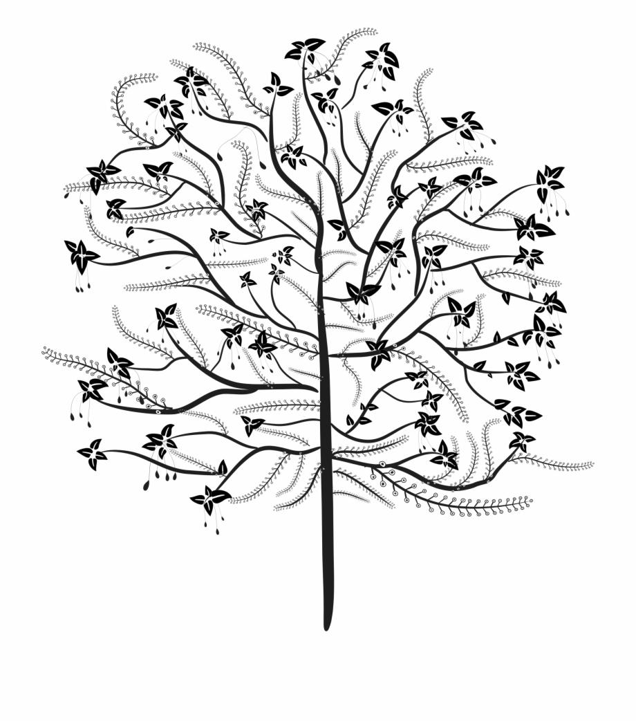 Line art transparent png. Koala clipart tree drawing