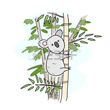 Koala clipart tree drawing. Free download best on