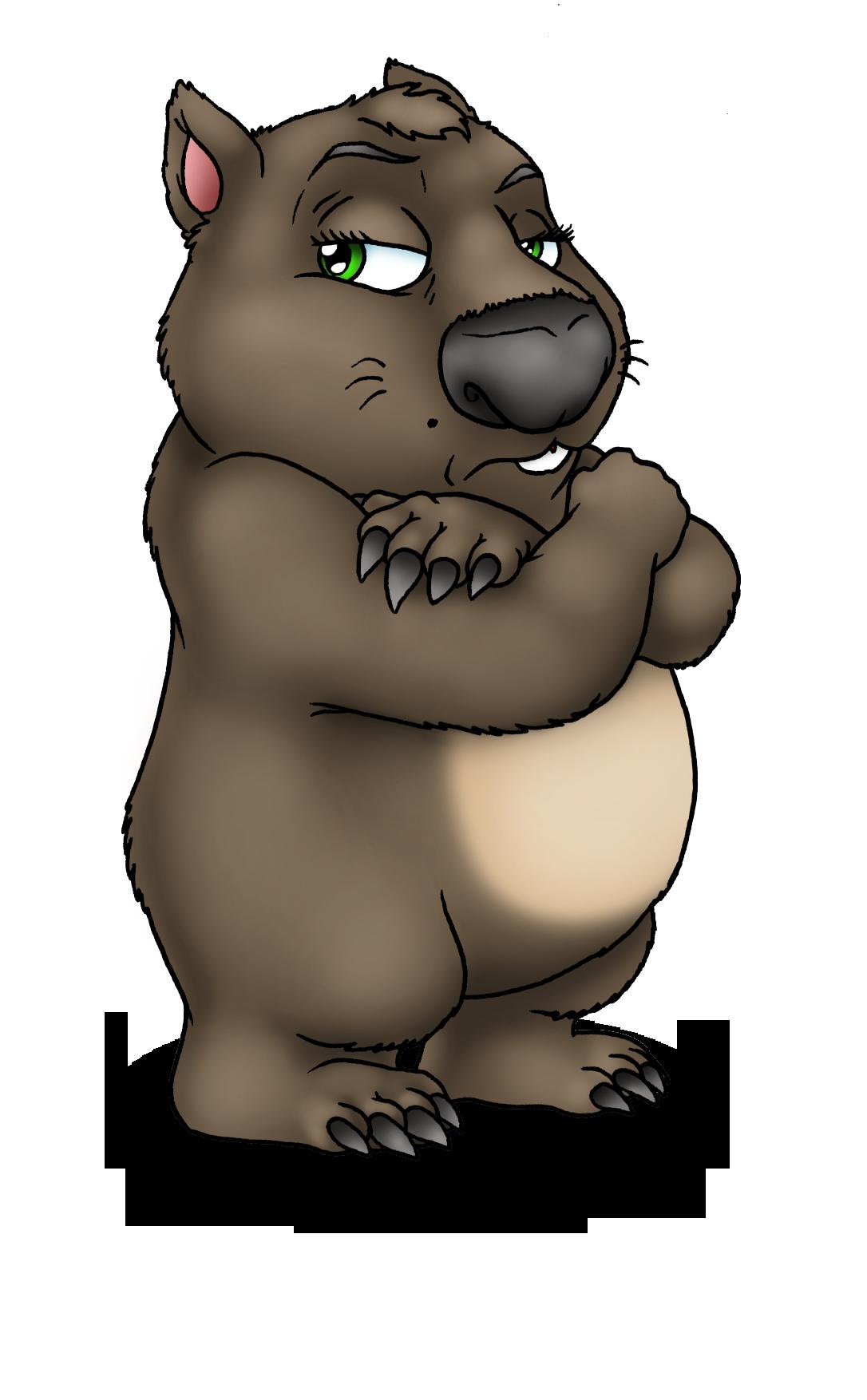 Koala clipart wombat. Special guest interview grumpy