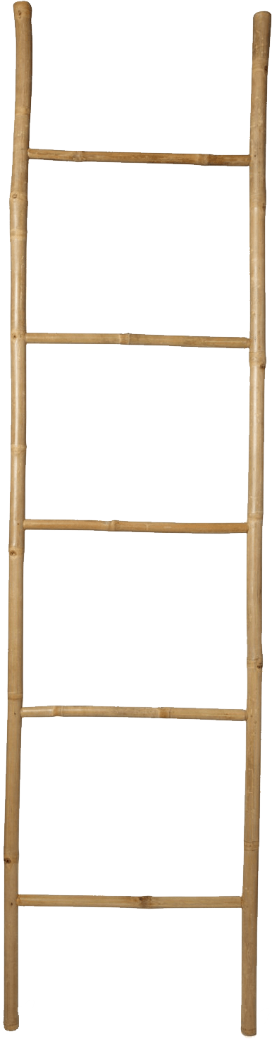 Browsing category ng design. Ladder clipart bamboo ladder