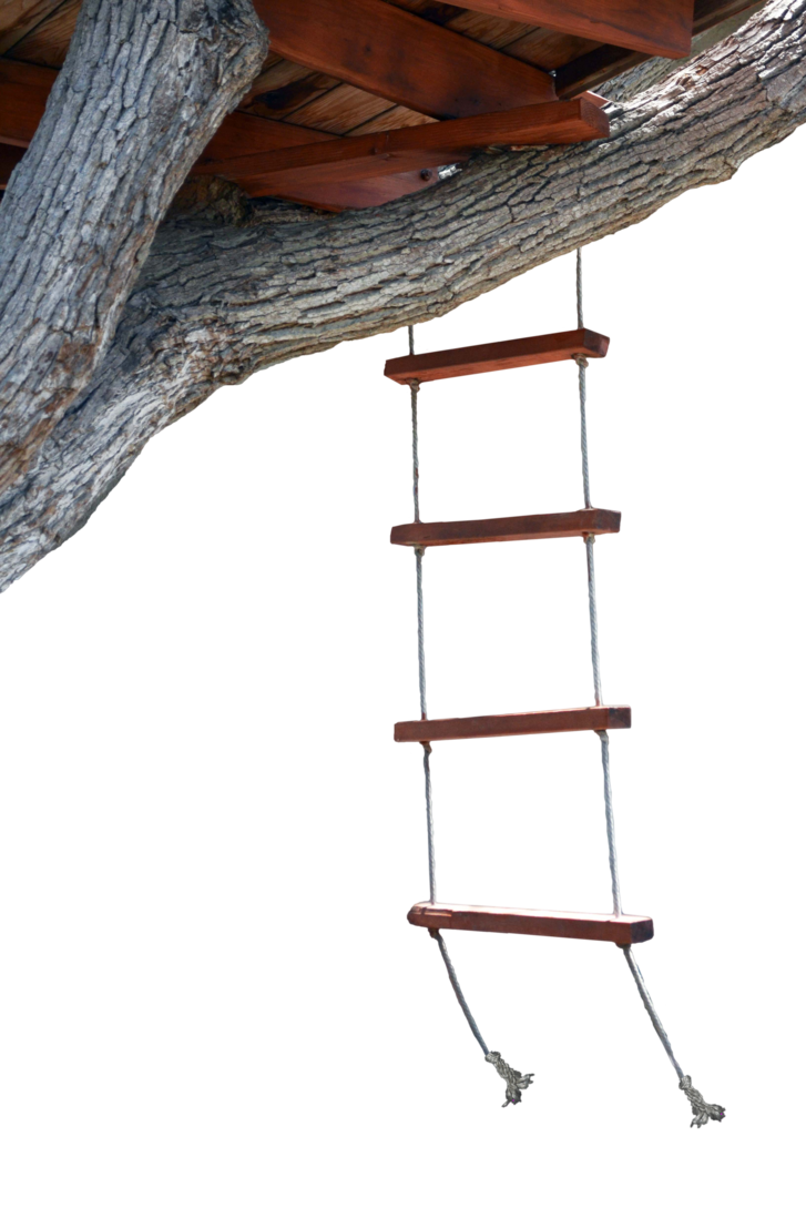 Ladder clipart tree fort.  cool rope house