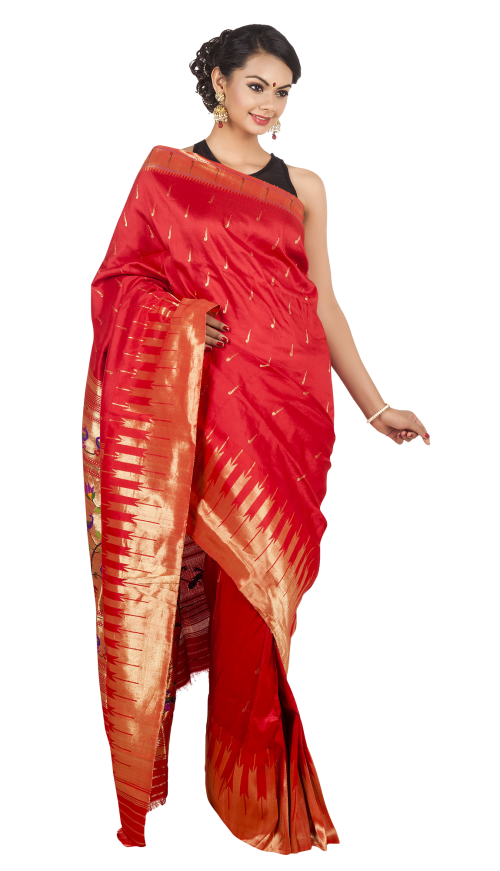 lady clipart saree