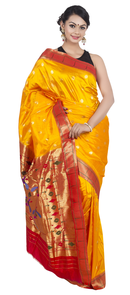 Wedding png transparent image. Lady clipart saree