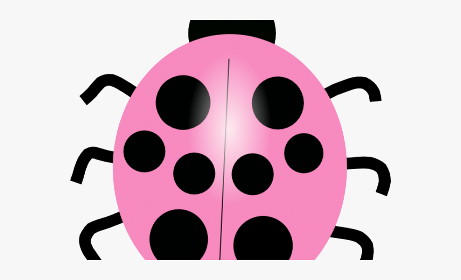 Pink cliparts of different. Ladybug clipart 10 orange