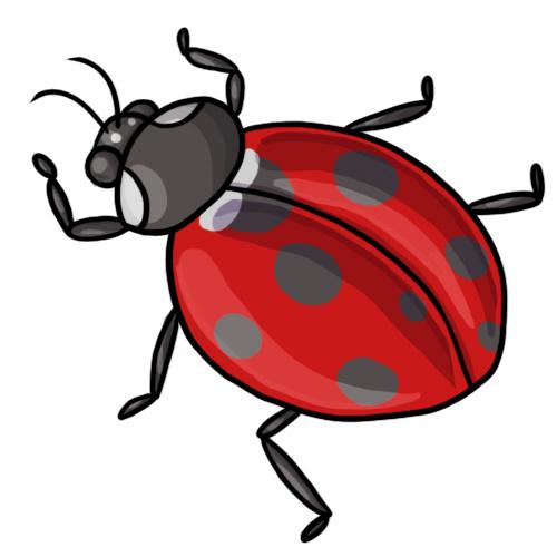 free clip art. Ladybug clipart