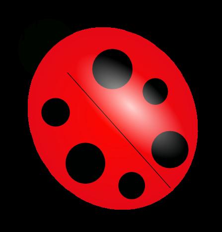 Everything ladybug the source. Ladybugs clipart