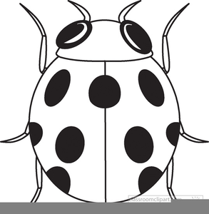 Free images at clker. Ladybug clipart black and white