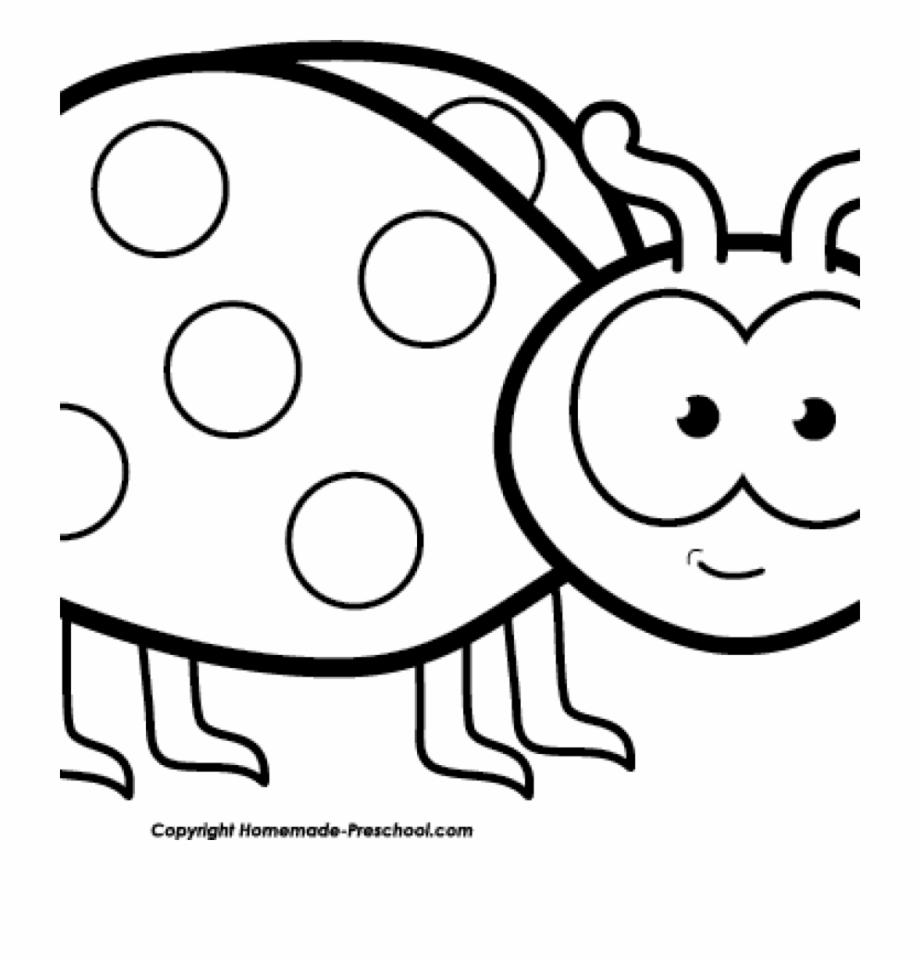 Ladybug clipart black and white. Free images
