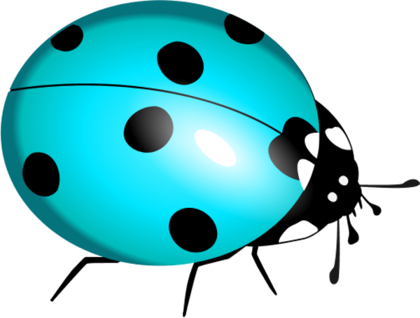 Art ladybird vector clip. Ladybug clipart blue ladybug