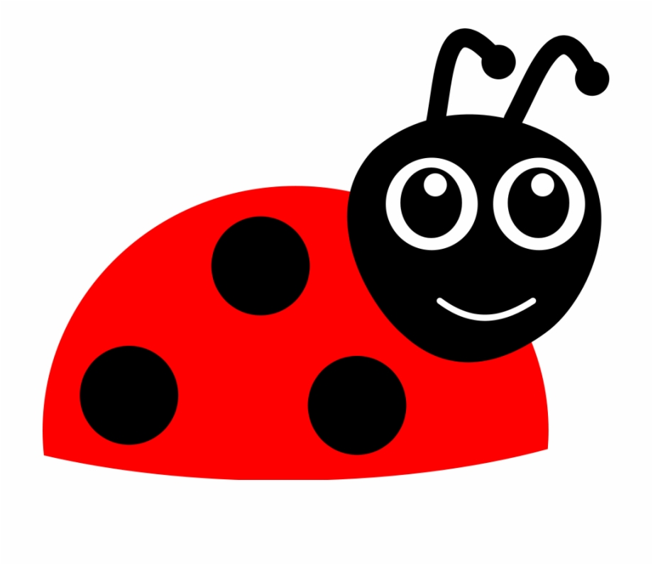 Ladybugs clipart real. Ladybug free cartoon lady