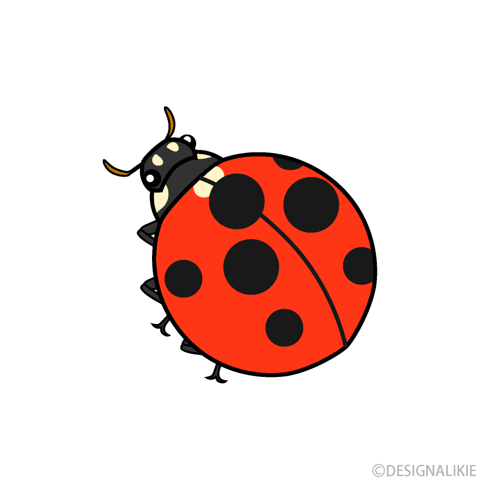 Free picture illustoon . Ladybug clipart cartoon