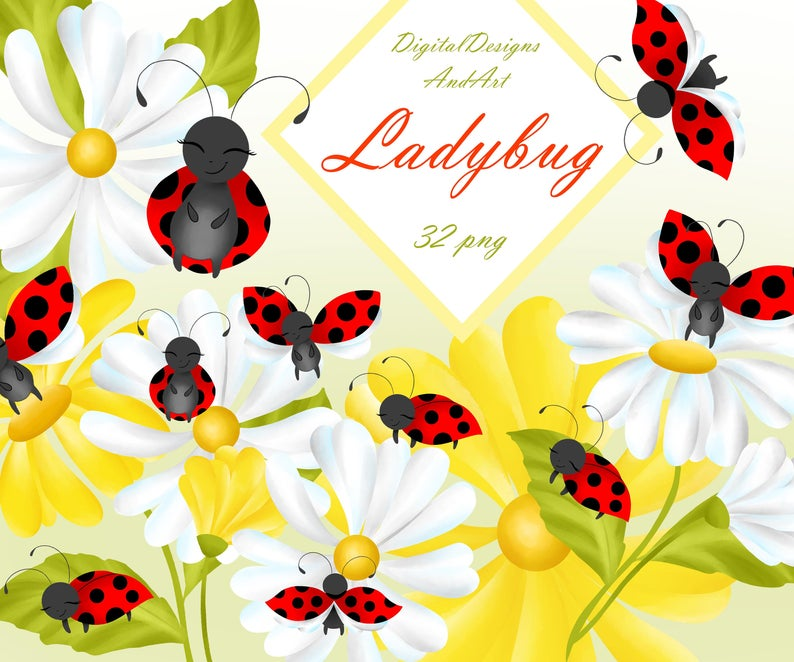Illustration bug cute garden. Ladybug clipart daisy