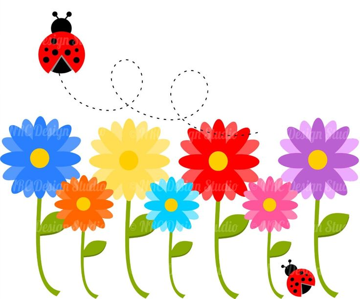 Free cute cliparts download. Ladybug clipart daisy