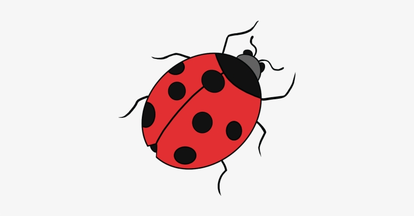 Png images free library. Ladybug clipart dead