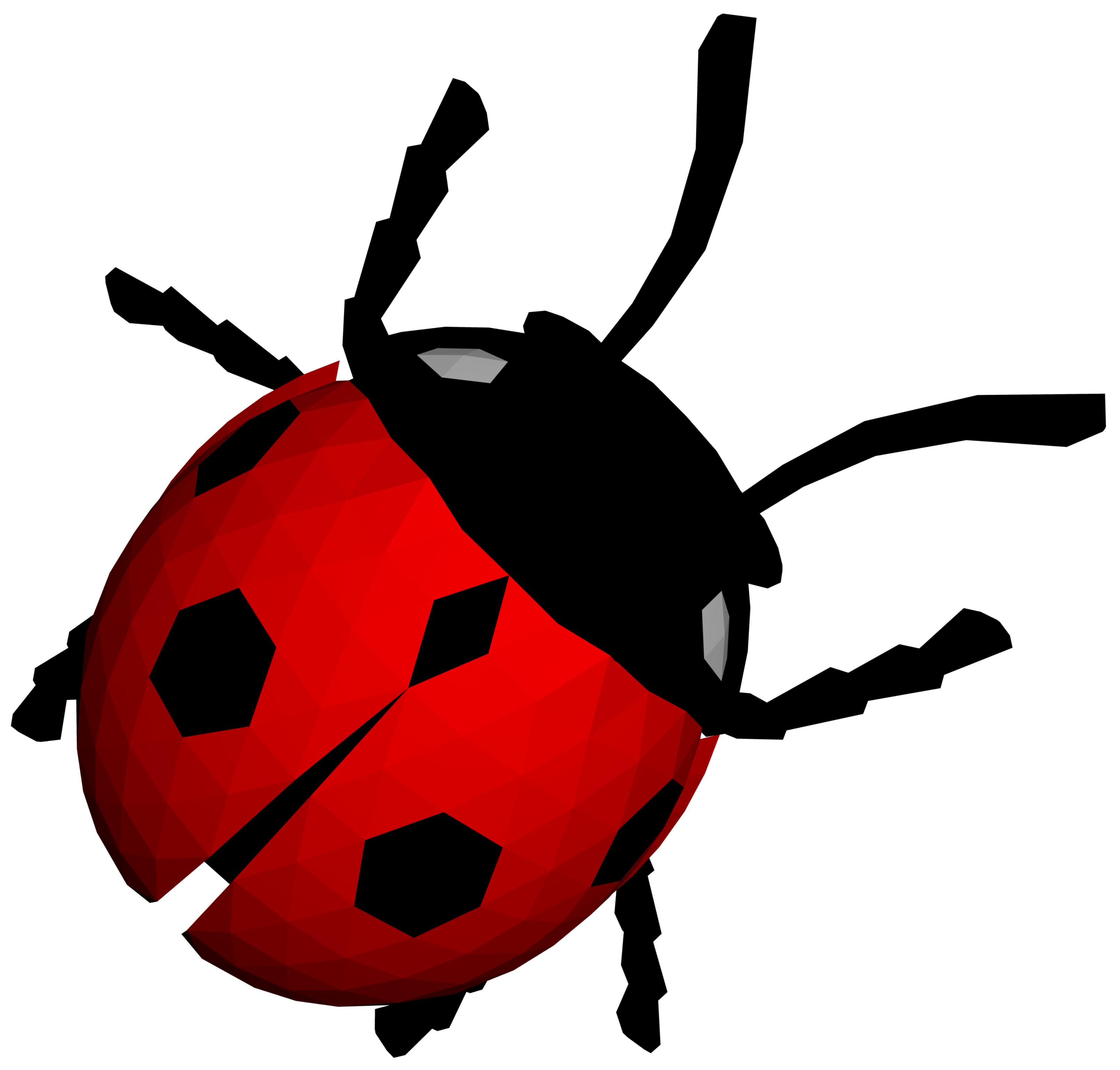 Png image free download. Ladybug clipart dead