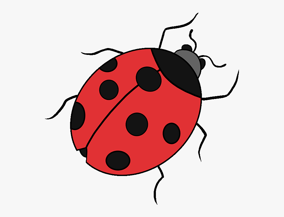 Ladybug clipart drawing. Bugs pretty free