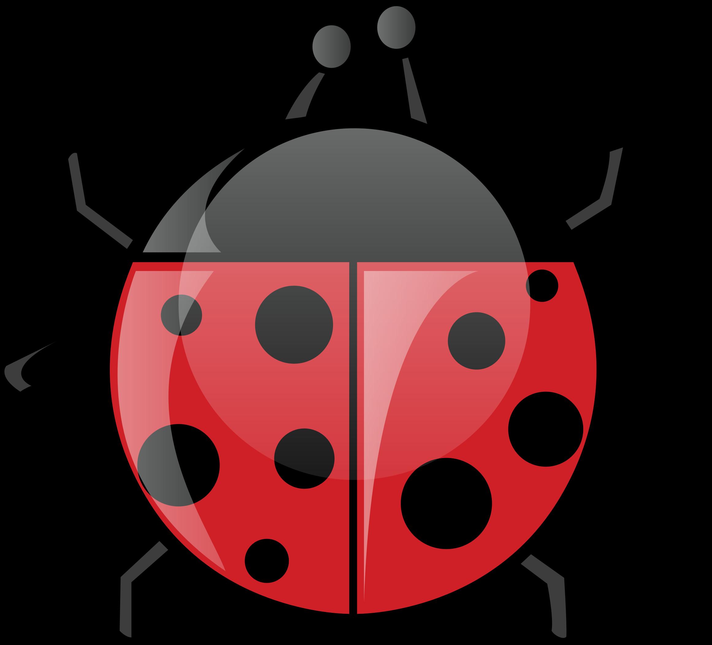 Spring ladybug. Ladybugs clipart transparent free