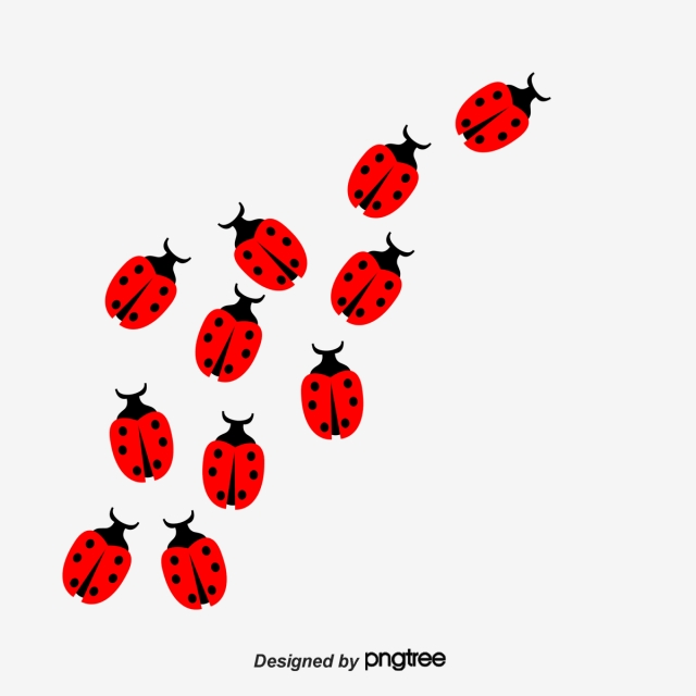 Bug insect png transparent. Ladybug clipart file