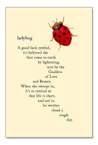 Ladybug clipart good luck symbol. A it s believed