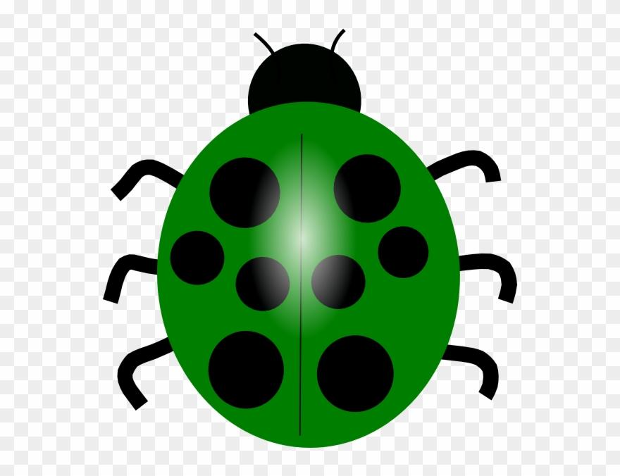 Black and white clip. Ladybug clipart green ladybug