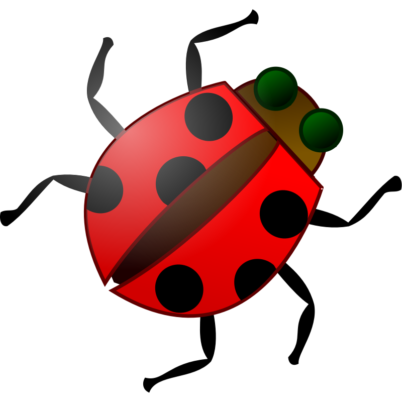 Love bug clip art. Ladybug clipart junebug