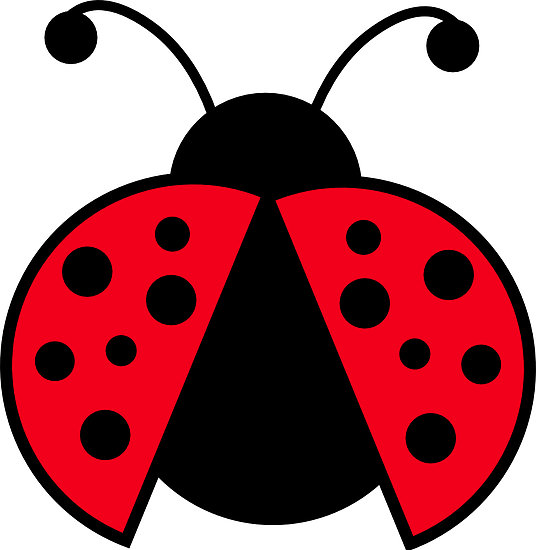 Free cliparts download clip. Ladybugs clipart red ladybug