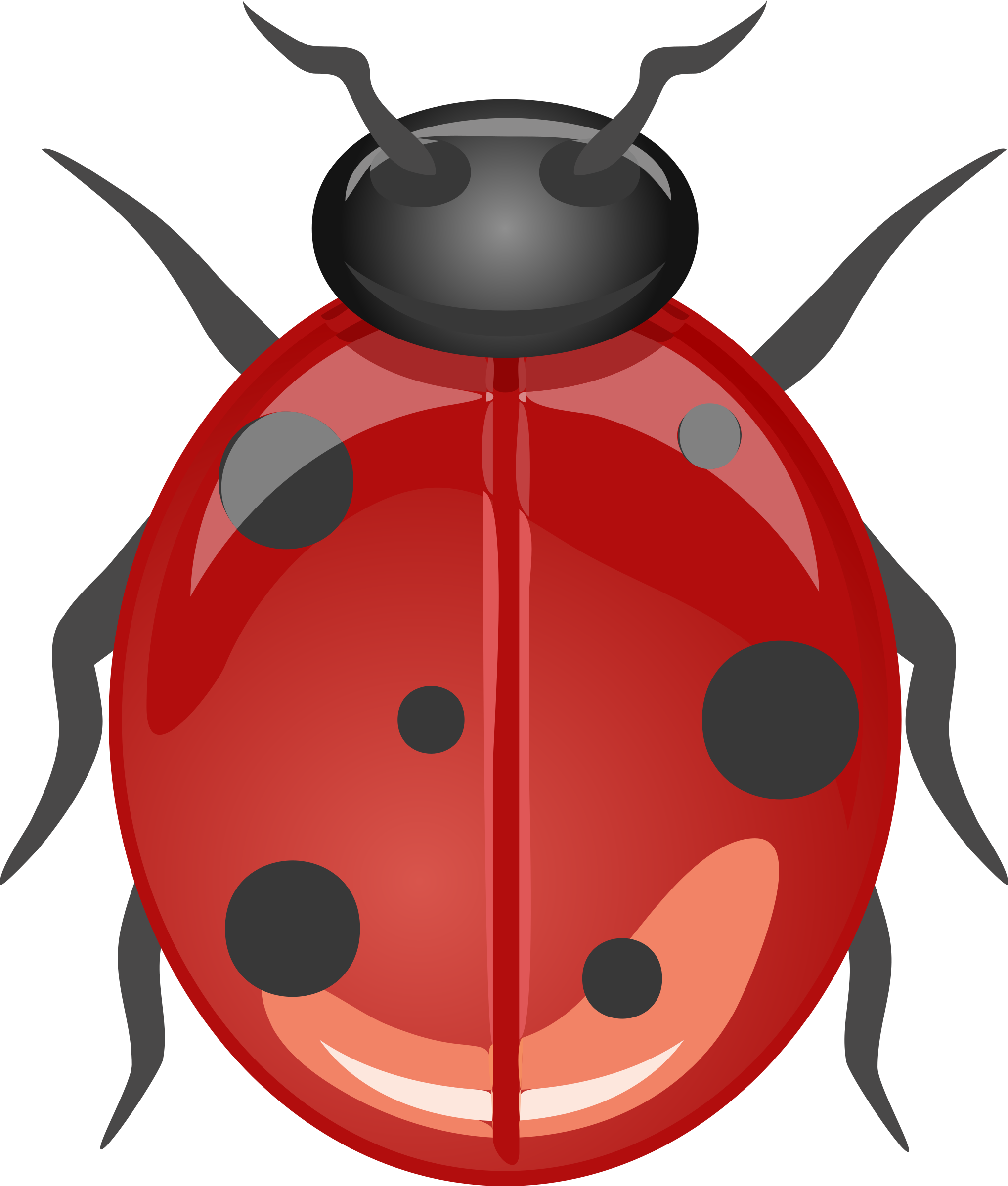 Ladybugs clipart red animal. Architetto coccinella big image