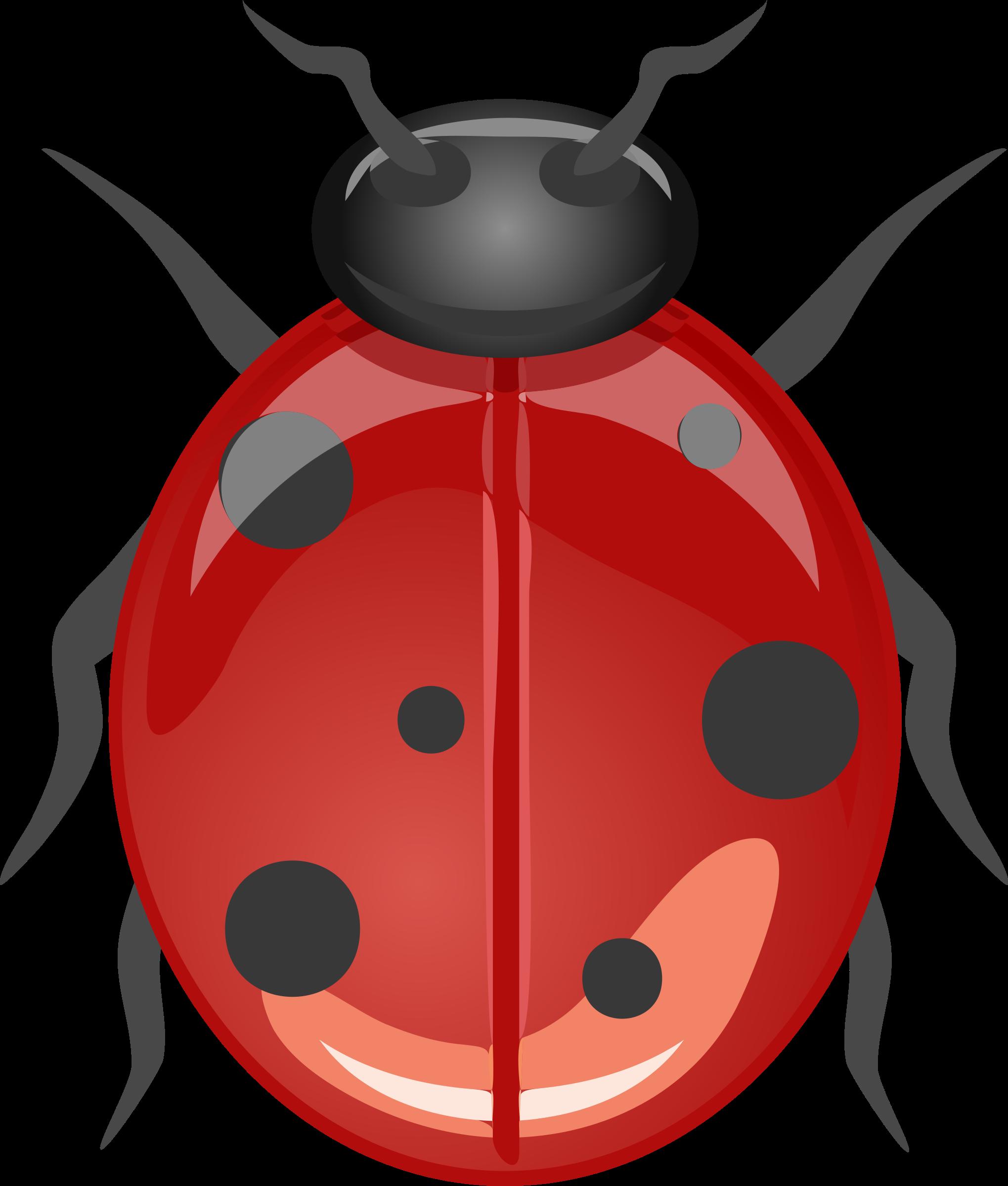 Ladybug clipart leaf clip art. Architetto coccinella big image