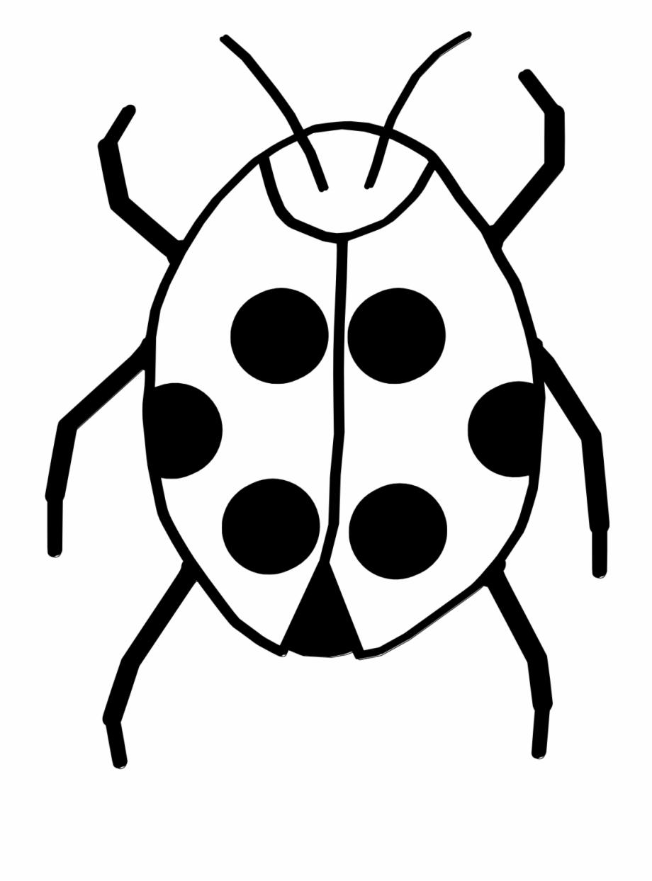 Ladybugs clipart line art. Images for ladybug clip