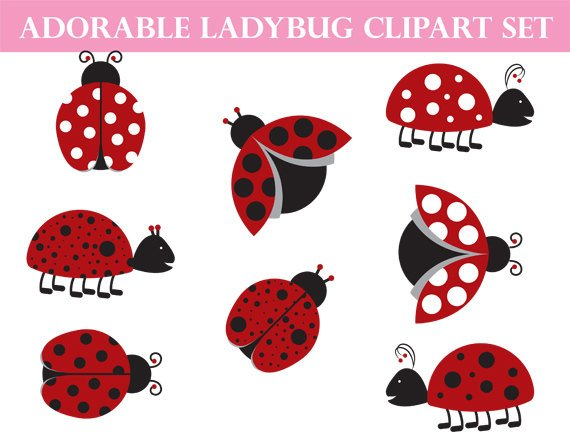 Ladybug clipart love. Commercial use whimsical art