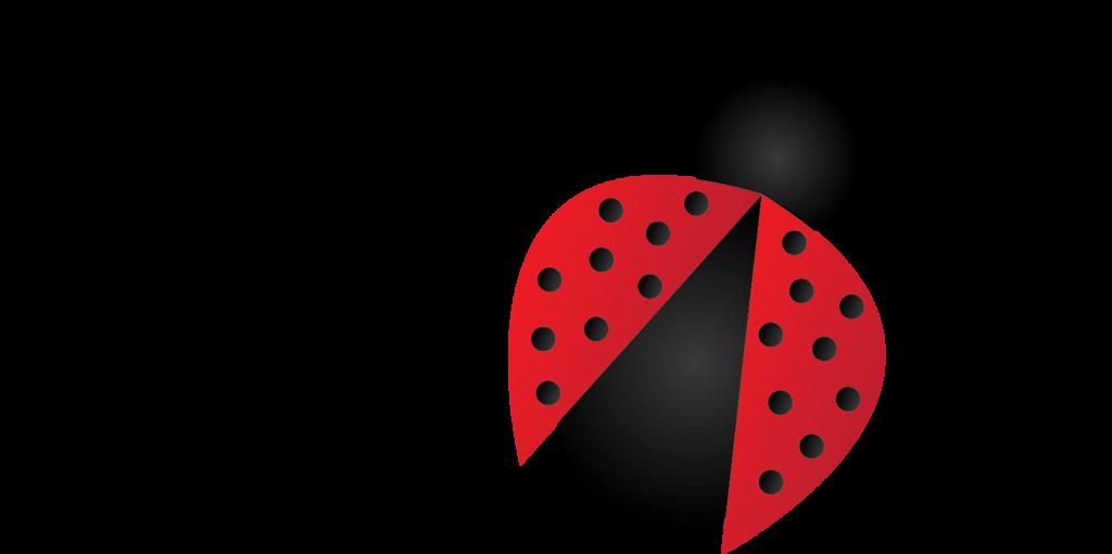 Ladybugs clipart transparent background. Png images all ladybug