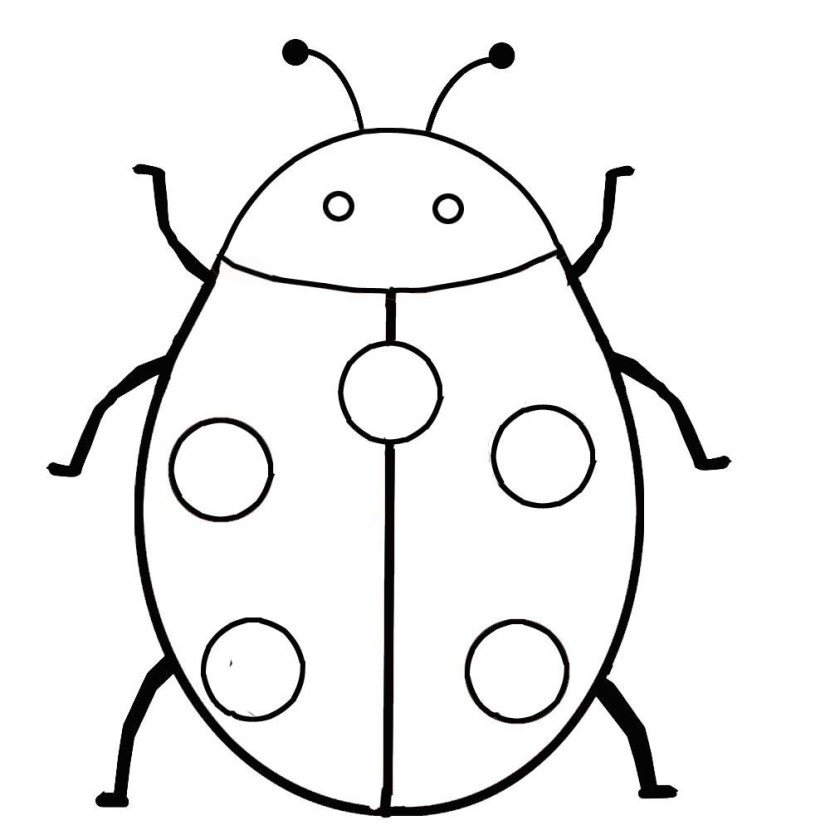 Clip art wikiclipart . Ladybug clipart outline