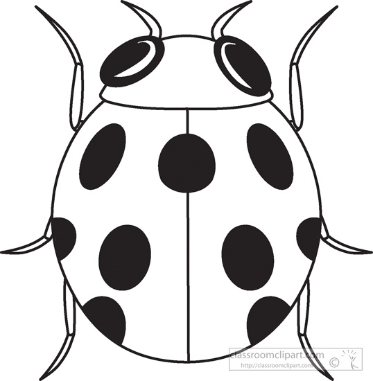Ladybug clipart outline. Wikiclipart