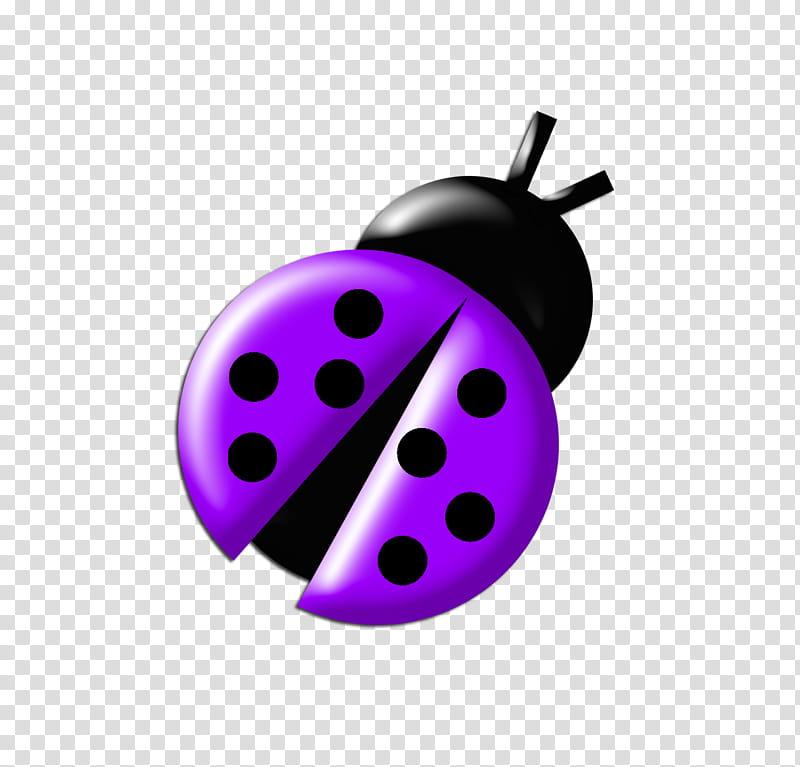 Ladybugs clipart purple. Colours bug illustration transparent