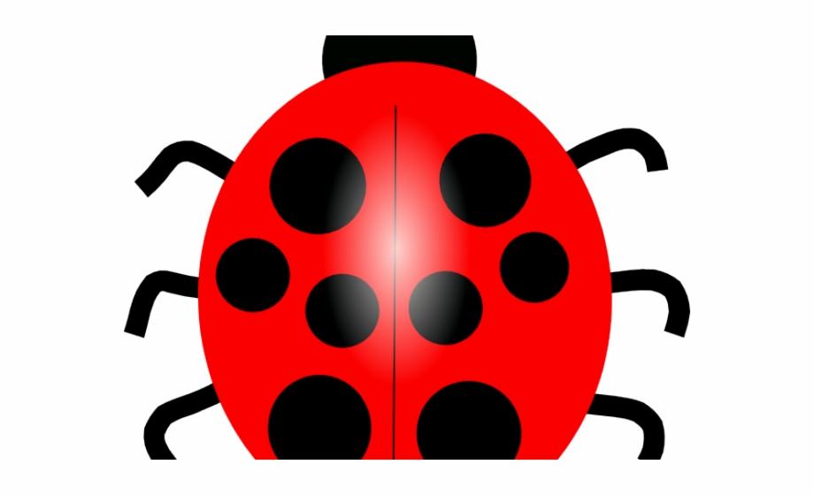 Lady beetle blue . Ladybug clipart red animal