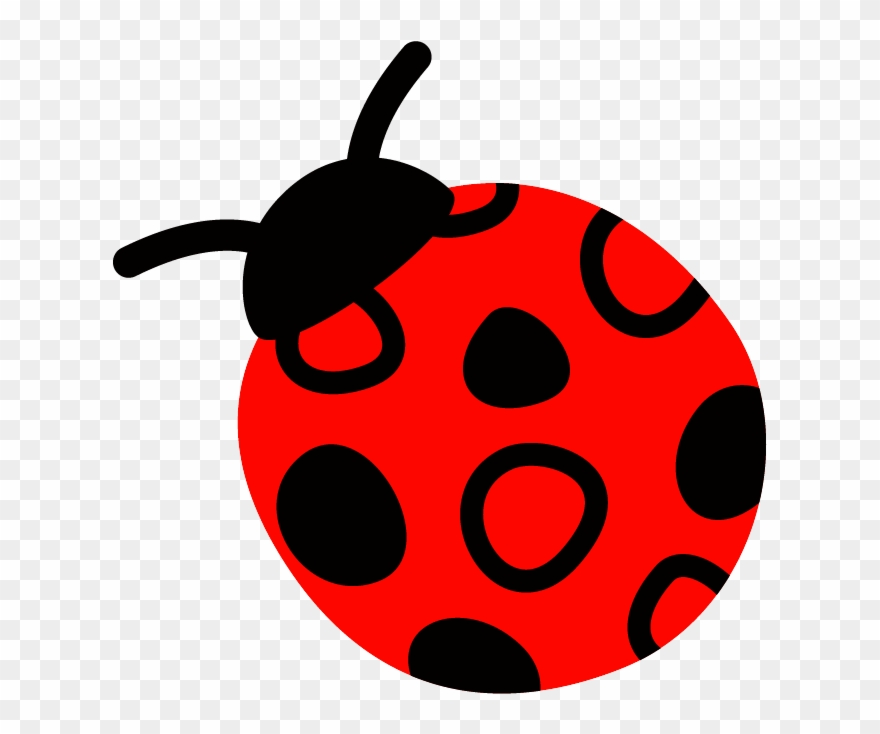 Ladybug clipart red animal. Lady bug pinclipart
