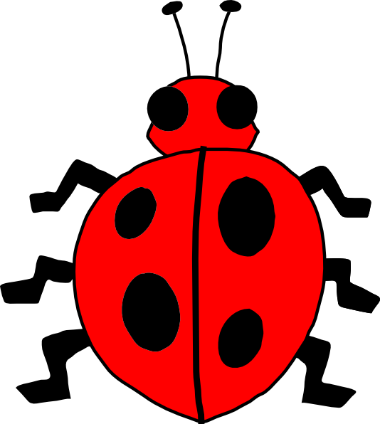 Ladybugs clipart red animal. Cartoon ladybug clip art