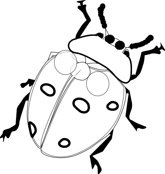 Black white line art. Ladybug clipart sketch