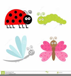 Ladybugs clipart small. Ladybug free images at