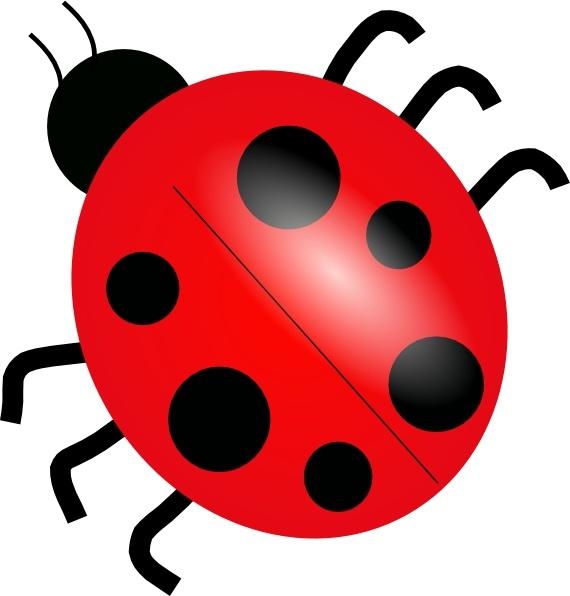 Ladybugs clipart blank. Ladybug clip art free