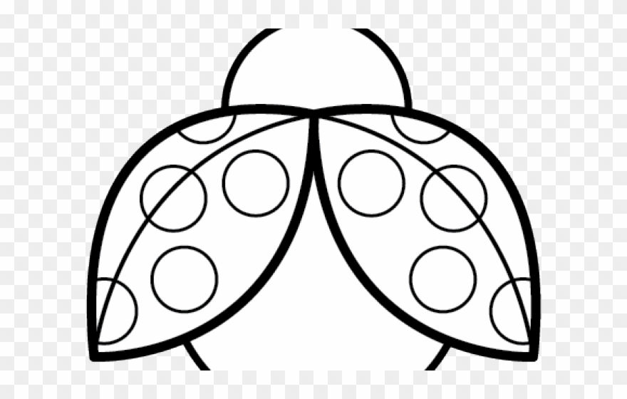 Symmetry lady bugs black. Ladybug clipart symmetrical
