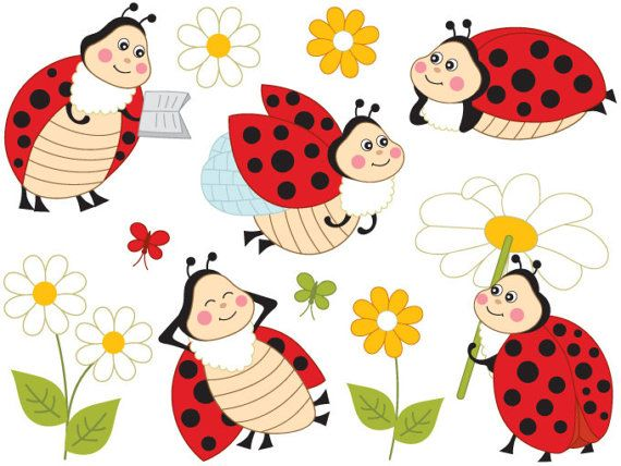 Digital vector ladybird insect. Ladybugs clipart item
