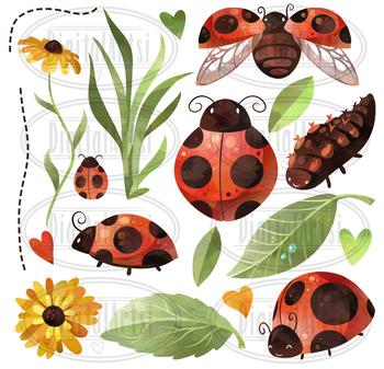 . Ladybug clipart watercolor