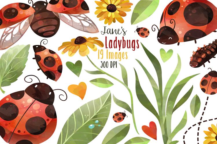 Ladybug clipart watercolor.
