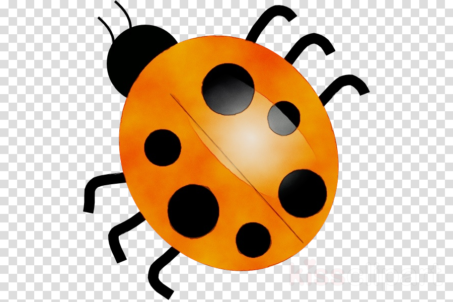 Ladybug clipart yellow ladybug. Insect transparent clip art