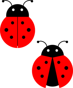 Clip art at clker. Ladybugs clipart
