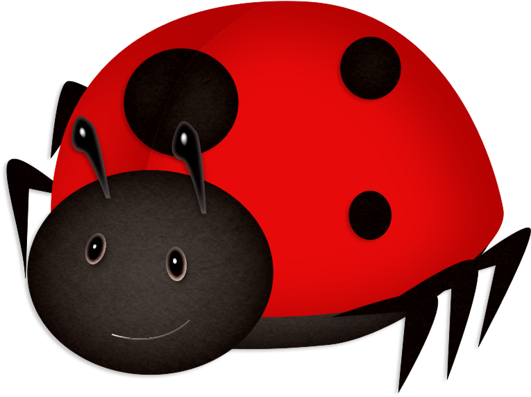Ladybird beetle png download. Ladybugs clipart adorable